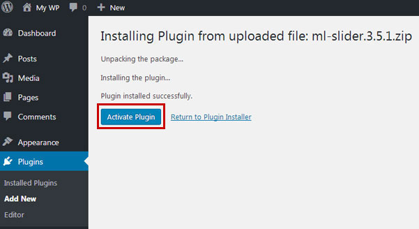 wp-plugin-activate-manually